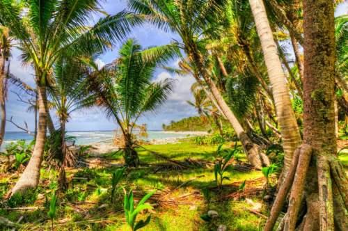 ostrov, Cookove ostrovy